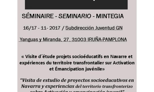 Seminario #YouthActivation Iruña-Pamplona
